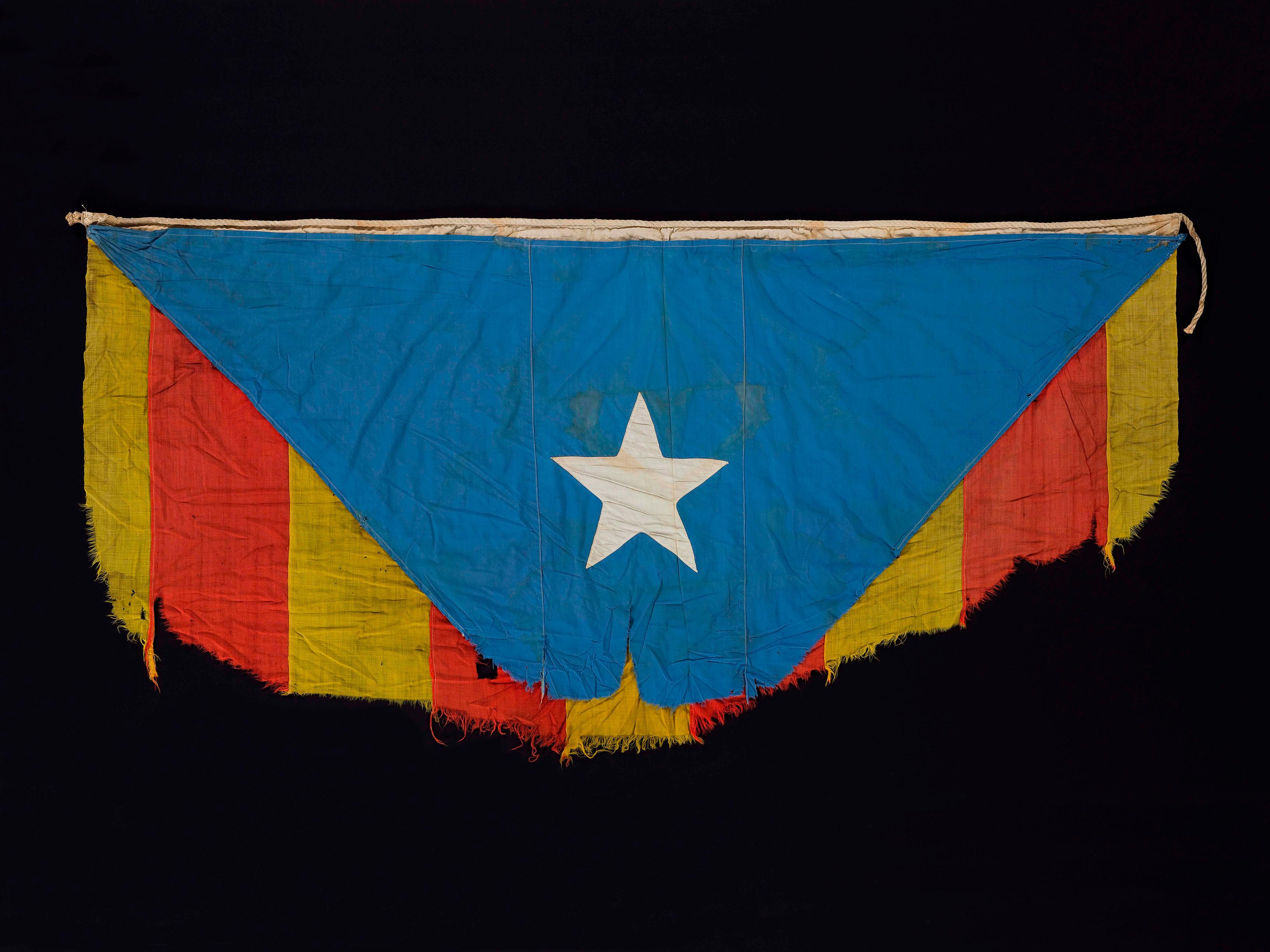 Bandera estelada dels voluntaris de Catalunya a la Gran Guerra